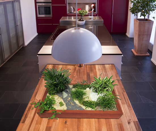mini garten in der kuche, minigarten - einen miniatur zimmer-garten gestalten, Design ideen