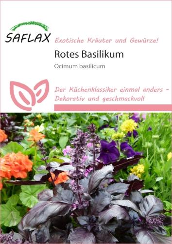 ocinum basilicum rotes basilikum anleitungen saatgut samen sorten green24 hilfe pflege. Black Bedroom Furniture Sets. Home Design Ideas
