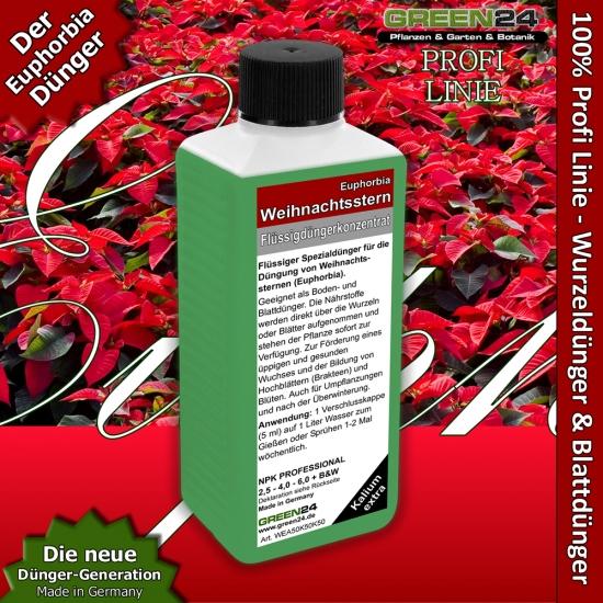 Poinsettia (Euphorbia pulcherrima) Liquid Fertilizer 250ml