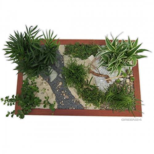 minigarten einen miniatur zimmer garten gestalten