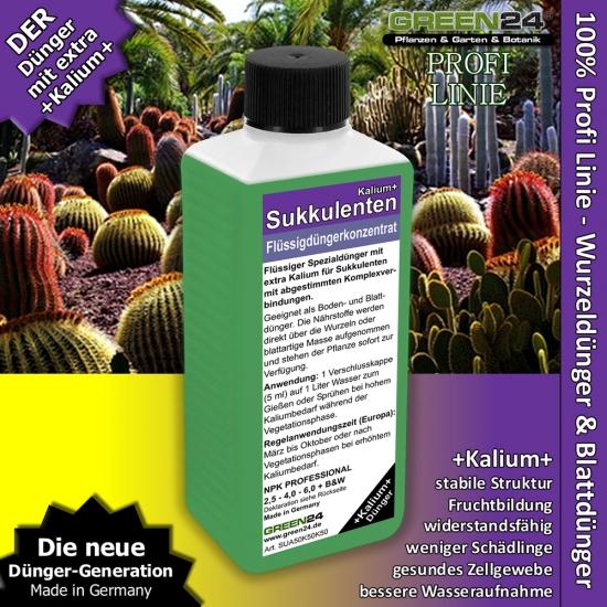 Succulent Potassium+ Feed - Liquid Fertilizer 250ml