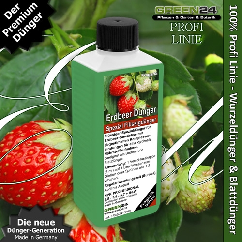 Strawberry Liquid Fertilizer for Garden Strawberry, Fragaria species 250ml