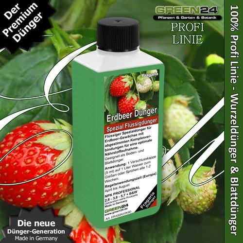 Erdbeerpflanzen-Dünger Fragaria Dünger 250ml