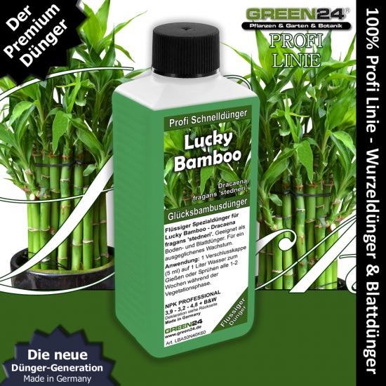 Lucky Bamboo Liquid Fertilizer 250ml