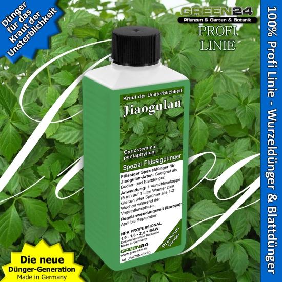 Jiaogulan - Herb of immortality - Liquid Fertilizer 250ml