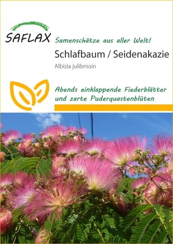 Schlafbaum Seidenakazie - Albizzia julibrissin (50 Korn)