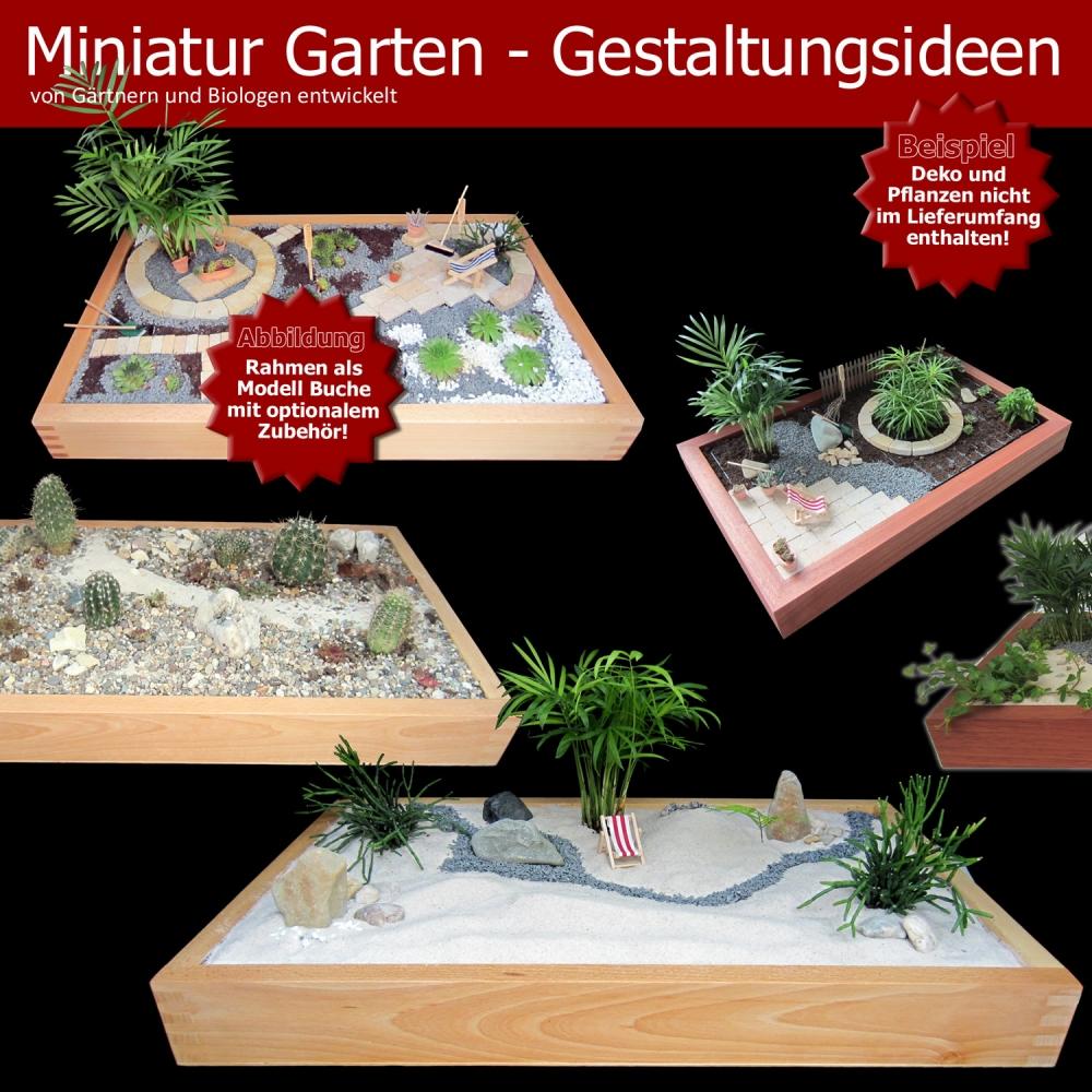 Mini Zen Garten Anlegen – igelscoutfo