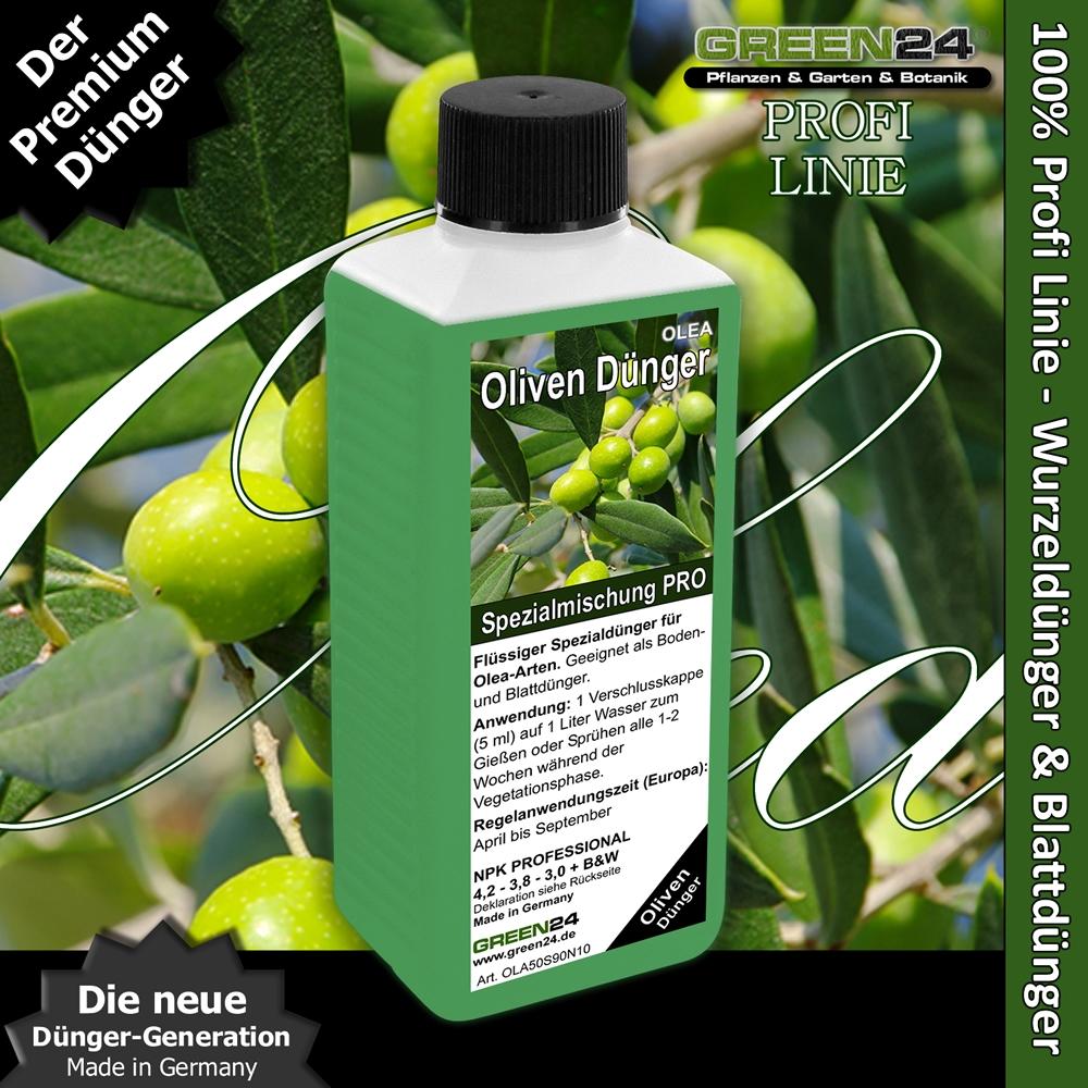 Lieblings Oliven-Dünger Olea europaea Flüssigdünger 250ml Olivenbaum @RA_26