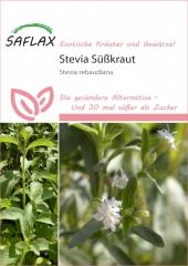 Stevia Süßkraut (100 Korn)