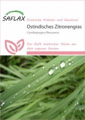 Zitronengras (50 Korn)