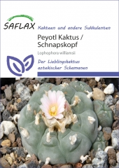 Peyotl Kaktus - Schnapskopf (20 Korn)