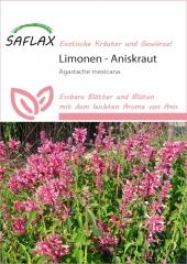 Limonen - Aniskraut (50 Korn)