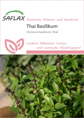 Thai Basilikum (200 Korn)