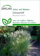 Chinaschilf - Silberfeder (200 Korn)