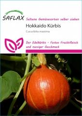 Japan Hokkaido Kürbis (10 Korn)
