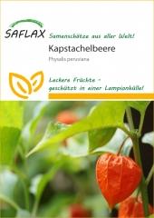 Kapstachelbeere - Andenbeere (100 Korn)