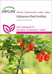Habanero Antilles Red (10 Korn)