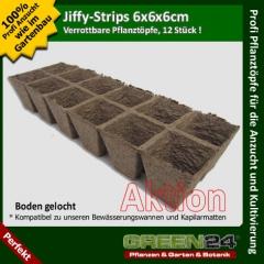 12 Jiffy-Töpfe, Jiffy-Strips 6x6x6cm