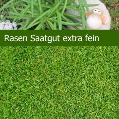 Rasen Saatgut, extra feine Rasenflächen