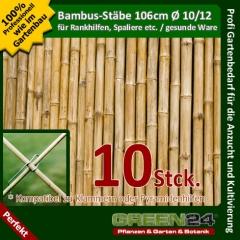 Bambusstäbe Rankhilfe D10-12 106cm 10 St