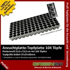 Anzuchtplatte Topfplatte 104 Töpfe (53,0 x 31,0 cm) (Typ G24)