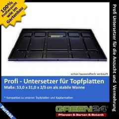 Untersetzer f. Topfplatte Anzuchtplatte  (53,0 x 31,0 cm) (Typ G24)