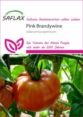 Pink Brandywine (10 Korn)