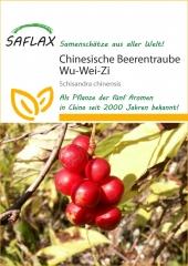 Wu-Wei-Zi Beere (15 Korn)