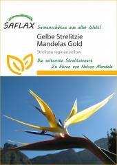 Gelbe Strelitzie- Mandelas Gold (4 Korn)