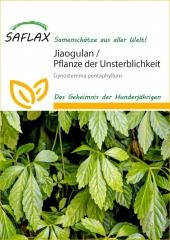 Pflanze der Unsterblichkeit (30 Korn)