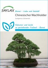 Chinesischer Wacholder (30 Korn)