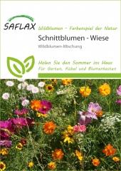 Schnittblumen Wiese (1000 Korn)
