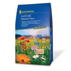 Wildblumen-Wiese Saatgut NATURE 250g