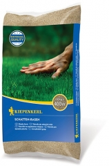 Schatten-Rasen-Rasensamen 10kg - 25g m2