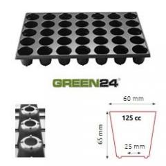STP Anzuchtset QP35R Topfplatte mit 35 runden Töpfen und Untersetzer inkl. Kapillarmatte (33,5 x 51,5 cm) (Typ STP) 35 runde Töpfe DxH 60x65mm