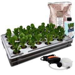 Aqua 36-C Pro Hydroponic Anzucht-System XL 40 x 60 cm, für Nutzpflanzen, Gemüse, Kräuter, Salate, Zierpflanzen in Tiefwasserkultur (DWC)
