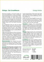 Gingko - Gingko biloba (4 Korn)