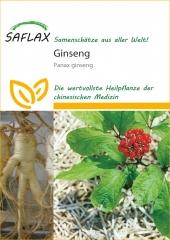 Ginseng (10 Korn)