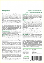 Hanfpalme (10 Korn)
