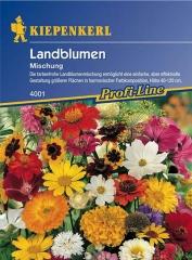 Land-Blumenmischung für 25 m2