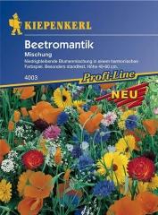 Beetromantik für 25 m2