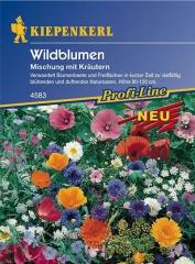 Wildblumenmischung m. Kräutern f. 25m2