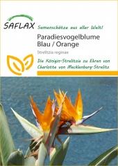 Paradiesvogelbaum Paradiesvogel Blume Strelitzia reginae (5 Korn) Pflanzen-Samen