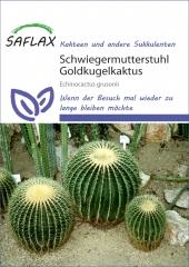 Schwiegermutterstuhl (40 Korn)