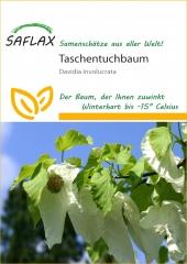 Taschentuchbaum (1 Korn)
