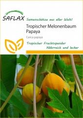 Tropischer Melonenbaum Papaya (30 Korn)