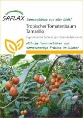 Trop. Tomatenbaum - Tamarillo (50 Korn)