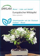 Europäischer Wildapfel (30 Korn)