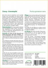 Zwerg-Granatapfel (50 Korn)