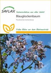 Blauglockenbaum (200 Korn)